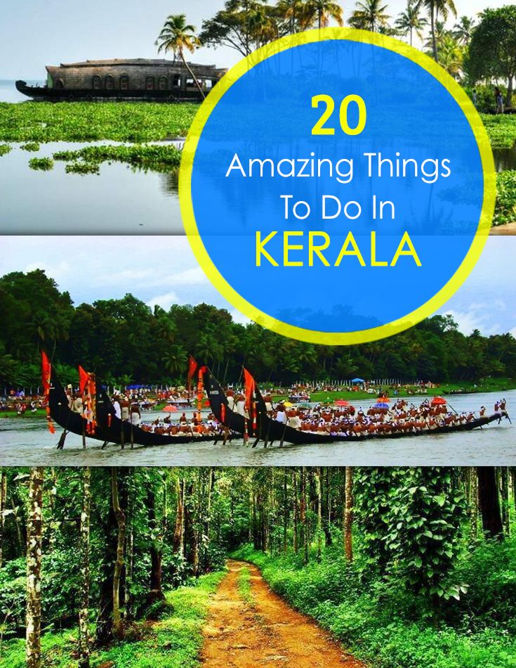 35 Amazing Things To Do On Your Trip to Kerala