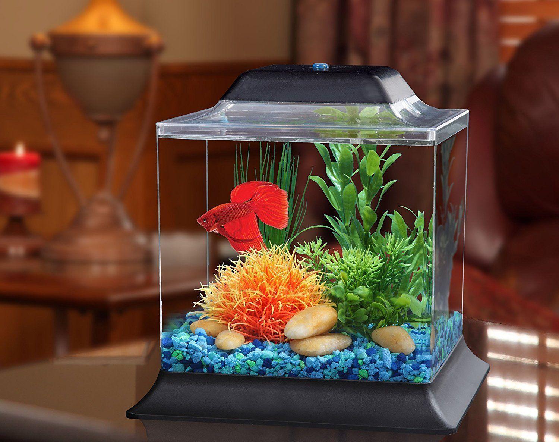 Aquarium Tank Kits アクアリウムのデザイン ベタ 水槽 ベタ 水槽 レイアウト