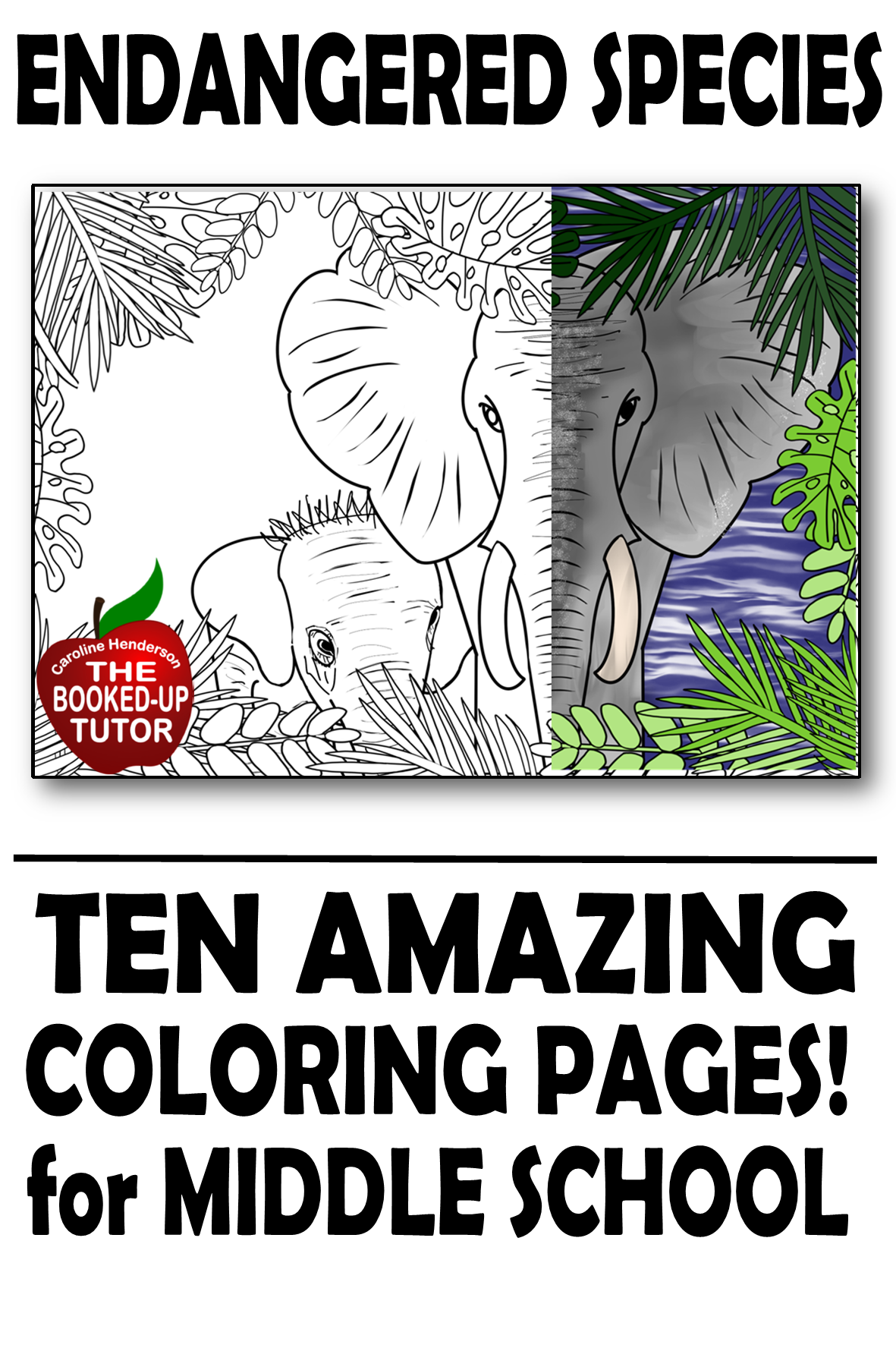 Endangered Animals Coloring In