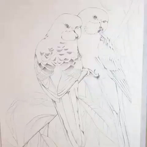 Parrot Animal Painting Watercolor