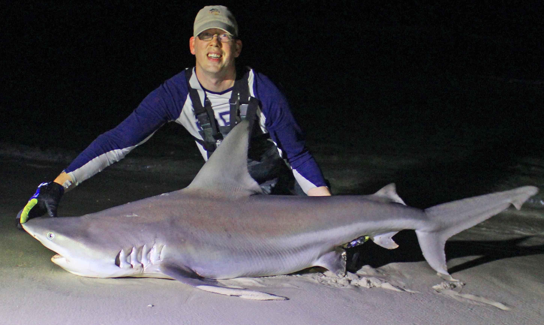 Shark fishing from the beach in panama city beach florida for Shark fishing panama city beach