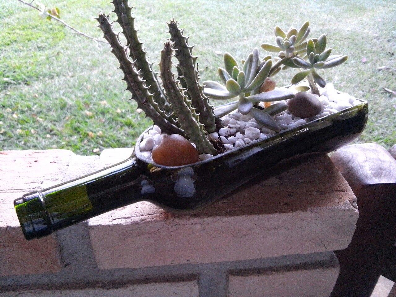 Garrafa de vinho cortada com micro retífica Dremel 4000. Plantado duas mudas de suculentas.