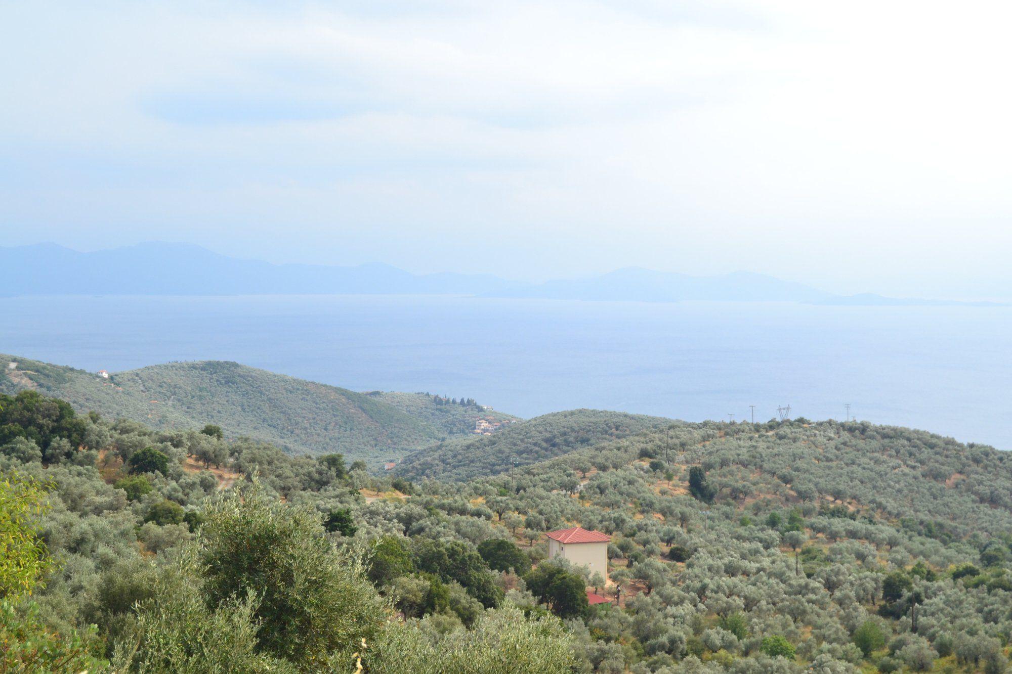 Tsagarada is the most wonderful destination in Pelion. - Mount Pelion, Thessaly Traveller Reviews - TripAdvisor