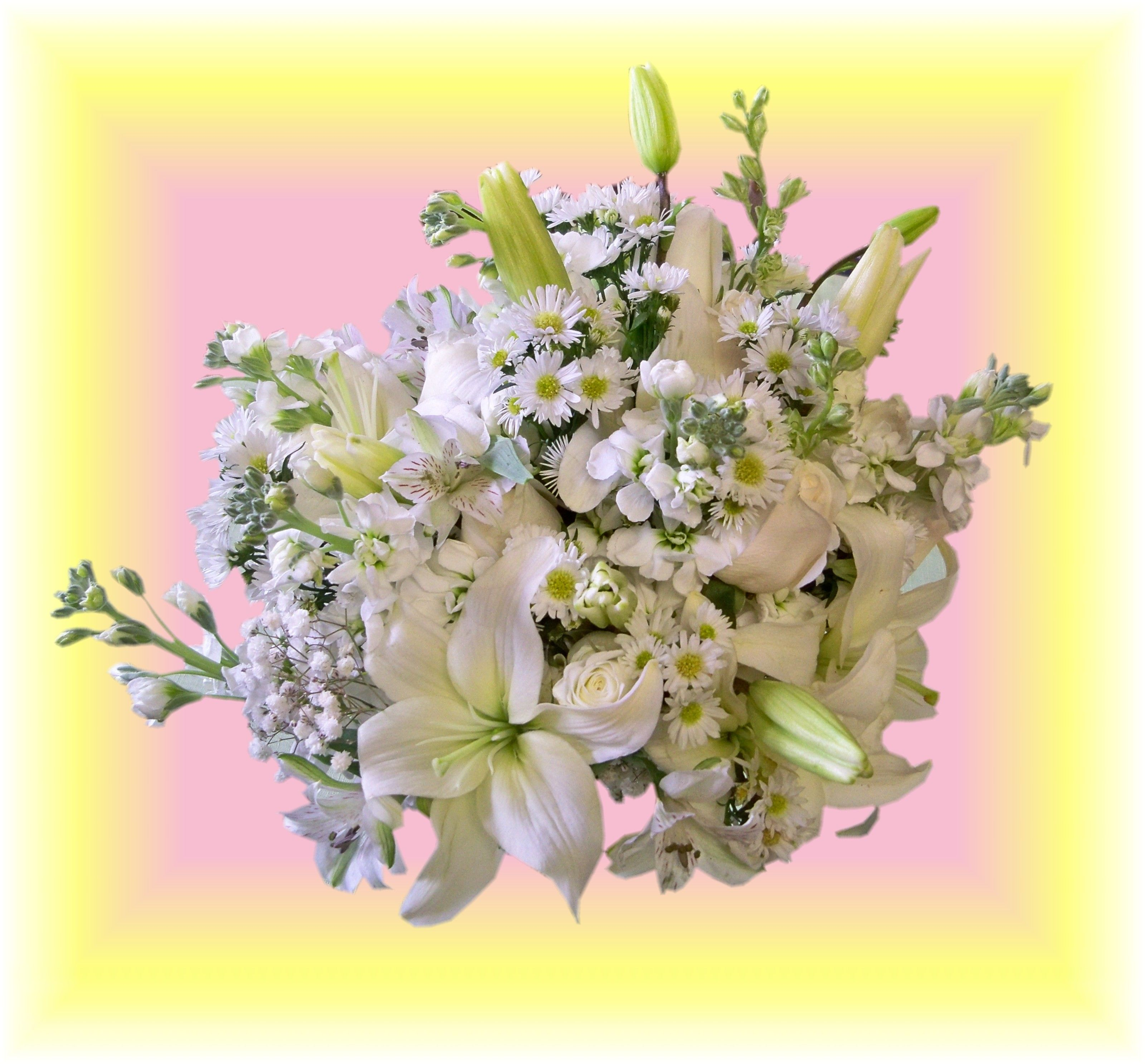 Occasions Florist   Murphy NC  White Wildflower Bouquet Top View