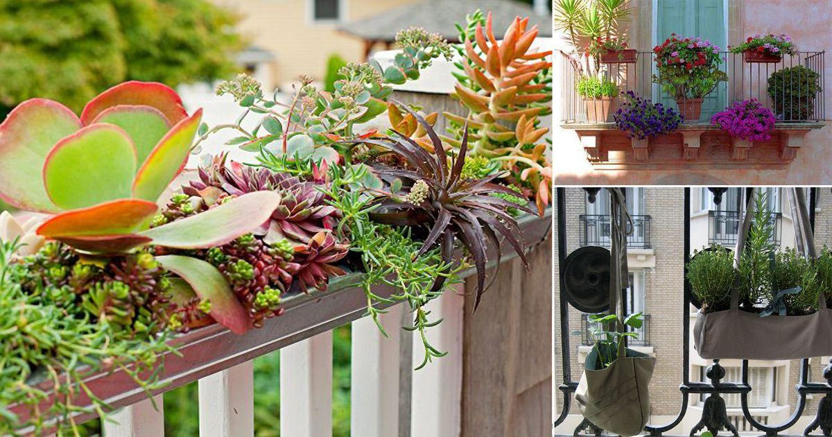 20 Diy Railing Planter Ideas For Balcony Gardeners 400 x 300