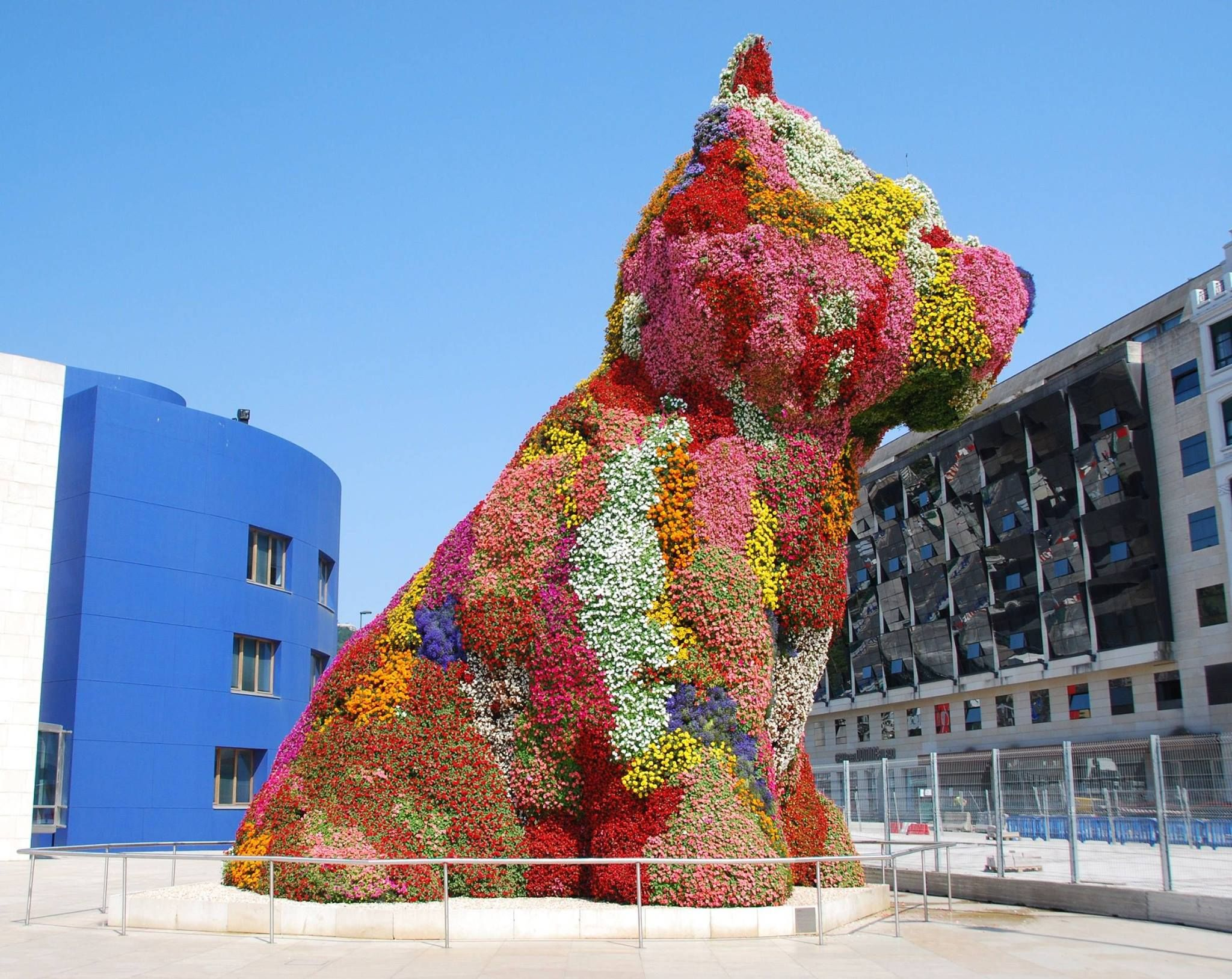 Coloring book by jeff koons - Jeff Koons Flower Dog