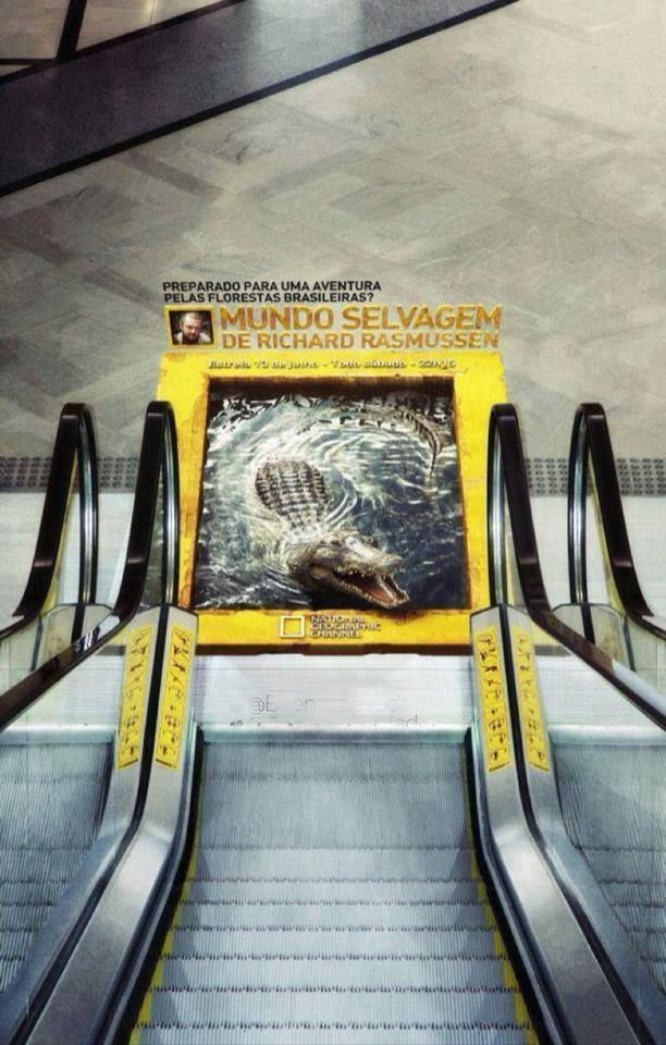National Geographic escalator advertisements. This sure looks real! #creative #advertisement #marketing