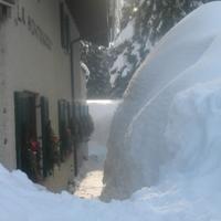 Rifugio La Montanara · Foto della struttura