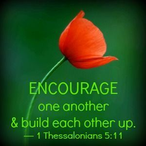 Therefore encourage one another and build each other up, just as in fact you are doing. — 1 Thessalonians 5:11 Who can YOU encourage today? http://www.faithgateway.com/hopelifters-need-hopelifters-too/#.UoXDY2SKJRo