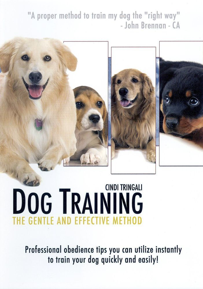 Dog Training The Gentle And Effective Method Dvd Products