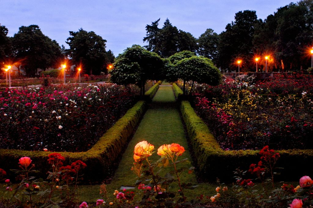 The Peninsula Park Rose Garden Portland, OR Rose garden