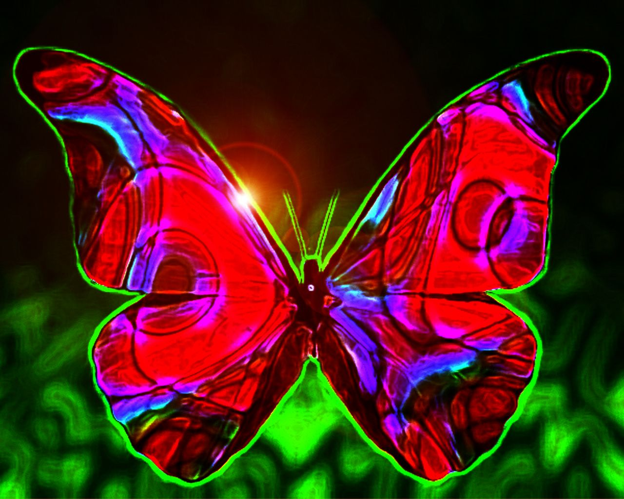 Top 14 Most Beautiful Butterflies In The World Amazing Colors Shapes Butterfly Background Butterfly Wallpaper Blue Butterfly Wallpaper