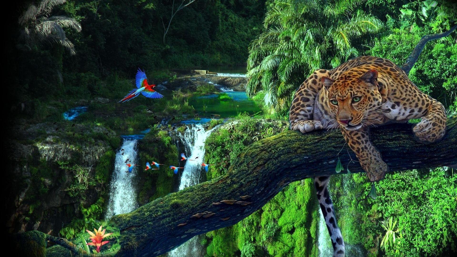 Amazon Rainforest Wall...