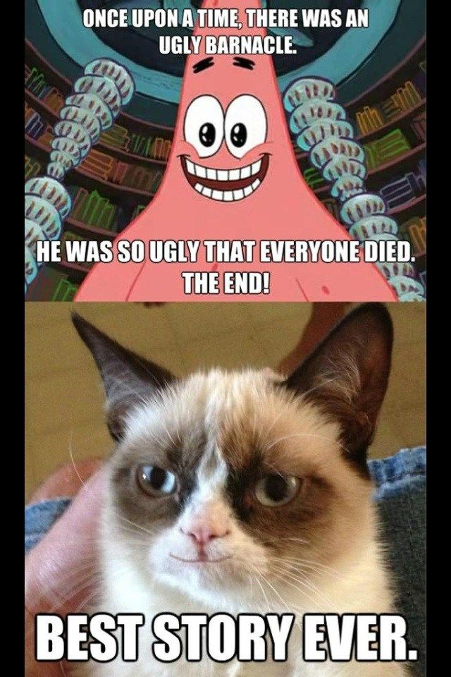 Top 29 Most Funniest Animals Quotes Funny Grumpy Cat Memes Grumpy Cat Meme Grumpy Cat Quotes
