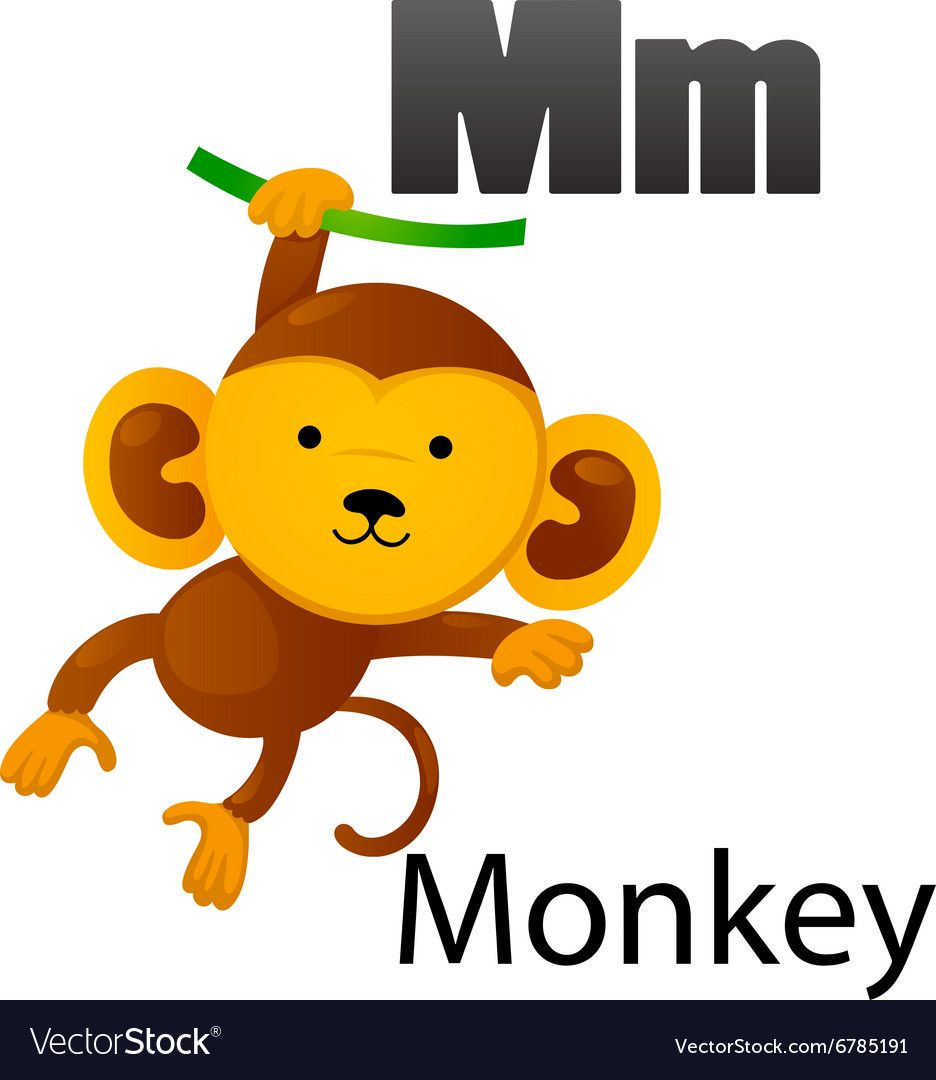 Alphabet m with monkey vector download a free preview or