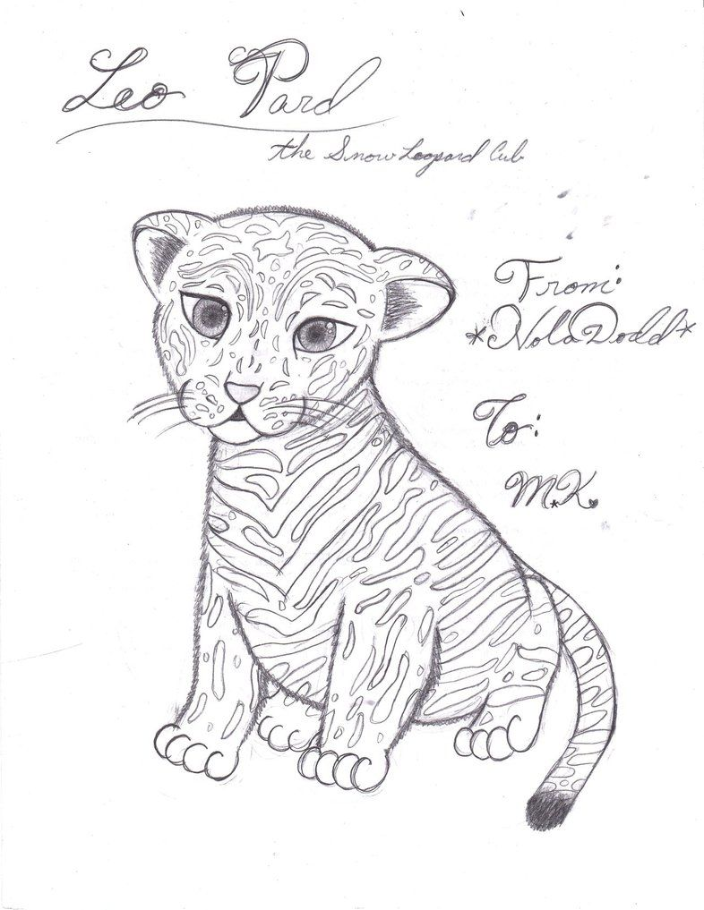 Snow Leopard Coloring Pages Snow Leopard Leopard Tattoos