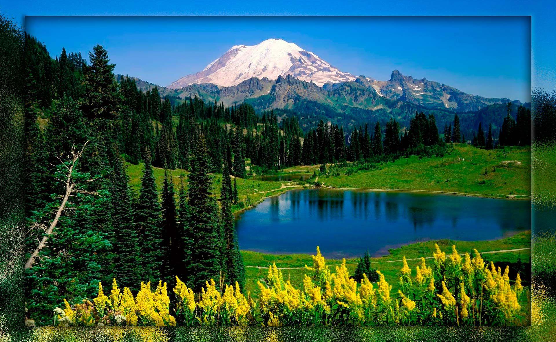 Fondo pantalla paisaje bonito bosque dios fondo animado for Imagenes de fondo de pantalla bonitos