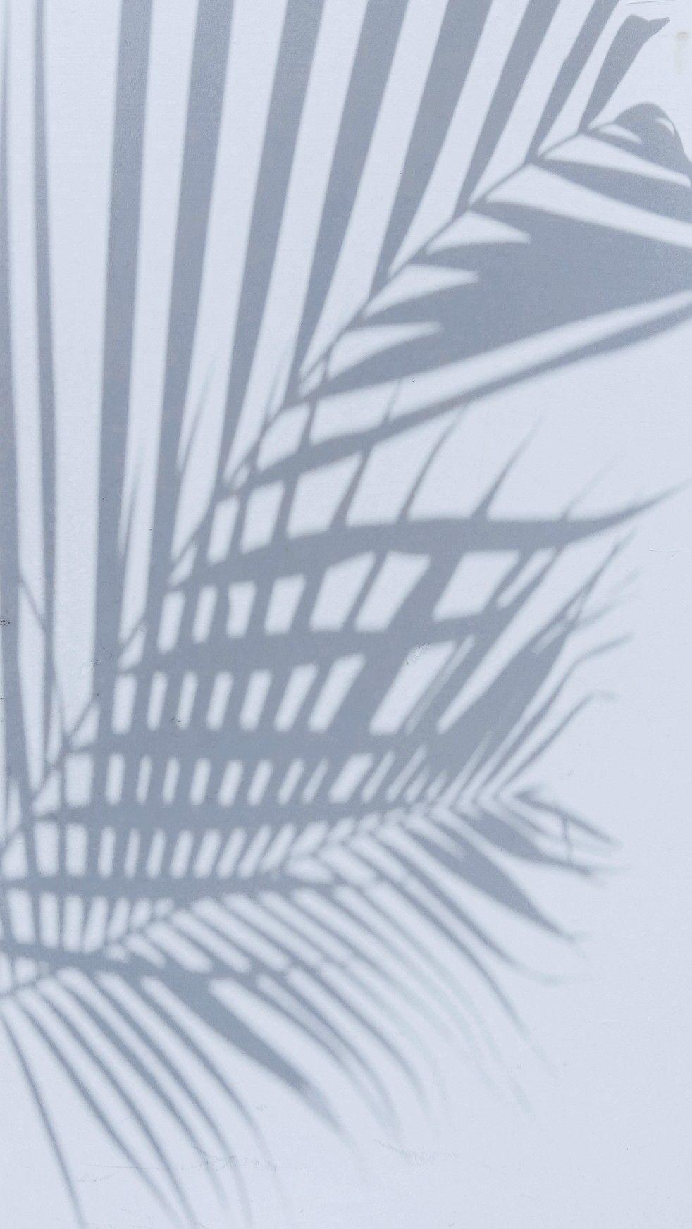 Pin Oleh Florencia Di Jepret By Me Latar Belakang Kertas Dinding Dinding Gambar