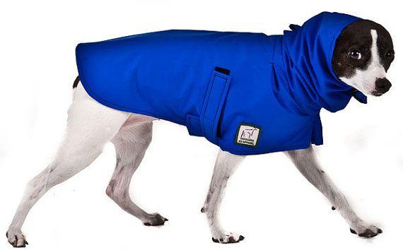 Rat Terrier Dog Rain Coat