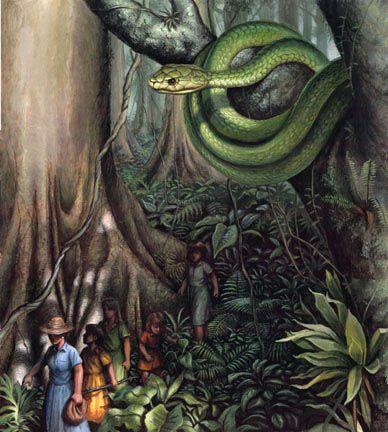 Poisonwood bible essay