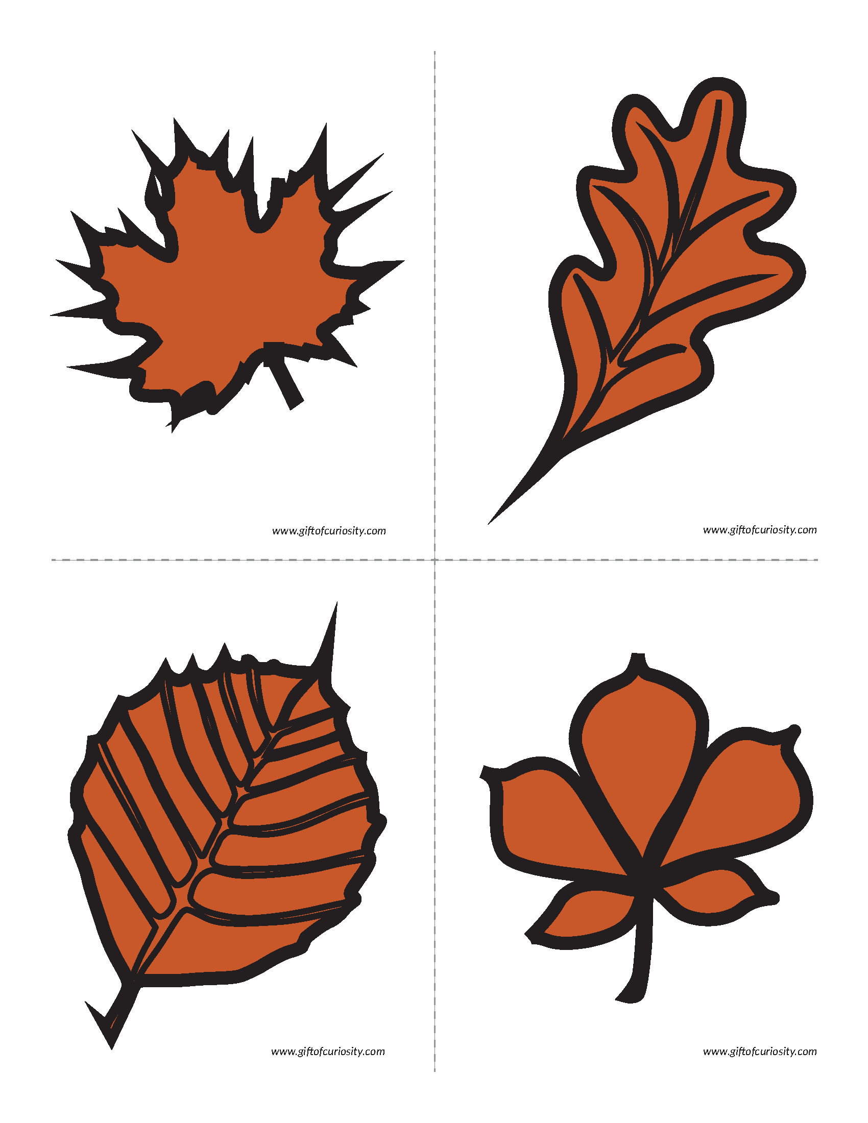 Hands On Activity Showing How Leaves Change Colors In The