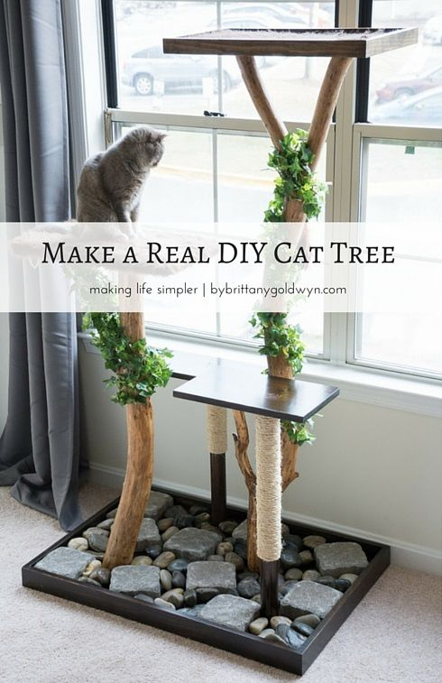 DIY Cat Tree Using A Real Tree