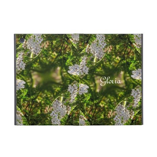 Late Day Glory Fractal iPad Mini Powis Case