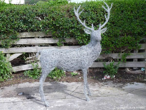 Stag, lifesize, made from recycled fencing wire.  Sculptor is exhibiting this year at Chelsea Laura Antebi