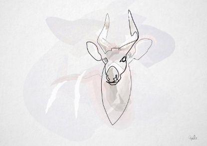 One Line Art Animation : One line bongo antelope canvas print toos pinterest africa