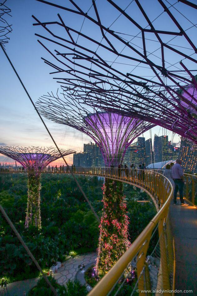 Garden By The Bay Blog gardensthe bay, singapore | design blog. | pinterest