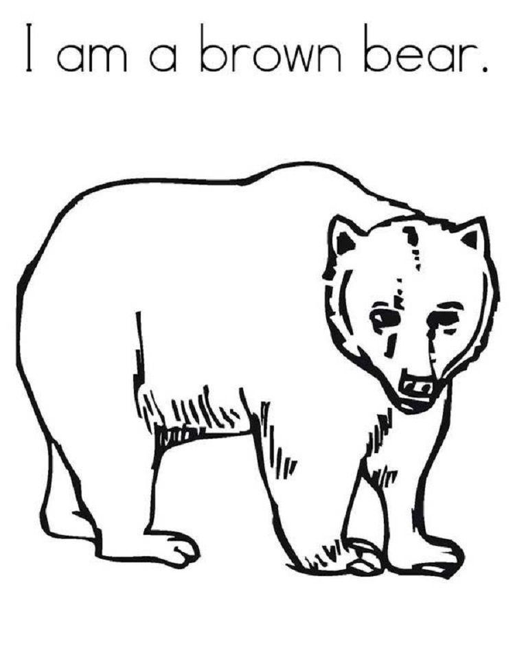 Brown Bear Coloring Pages Printable Basteln Winter Basteln Winter