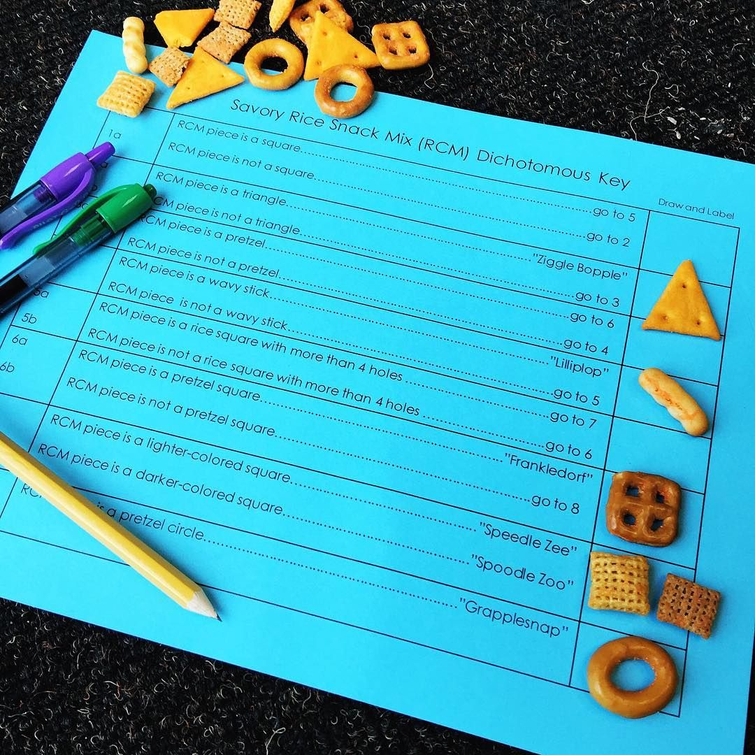 Pin By Michelle Voye On Classroom Transformation Ideas