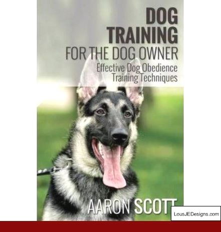 Tips On Dog Potty Training And Pics Of How To Train Your Dog To