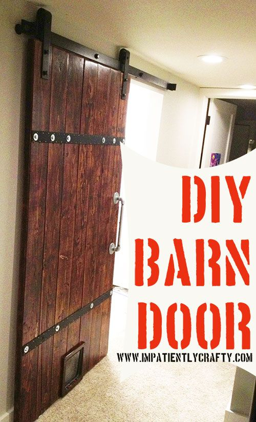 barn door with cat door diy