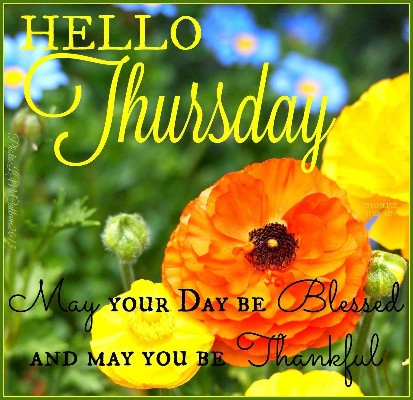 Good Morning Beautiful Thursday Images : Hello thursday may your day be blessed good morning