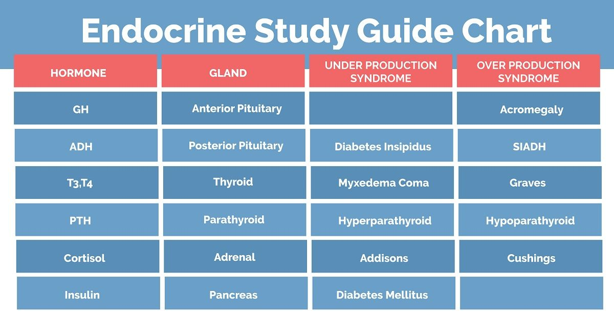 Endocrine system study guide for nclex boost testosterone booster increase also cheat sheet nursing pinterest rh