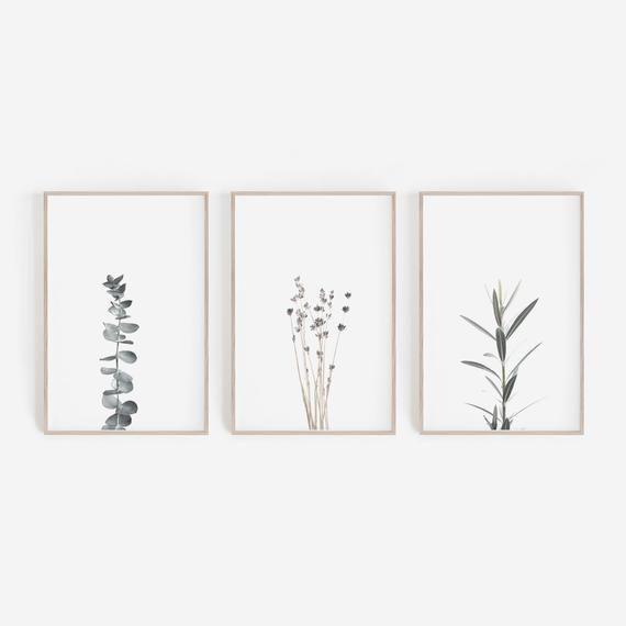 Lavender Field Framed Print By Rob Hemphill Photography Prints Art Beautiful Wall Art Framed Prints