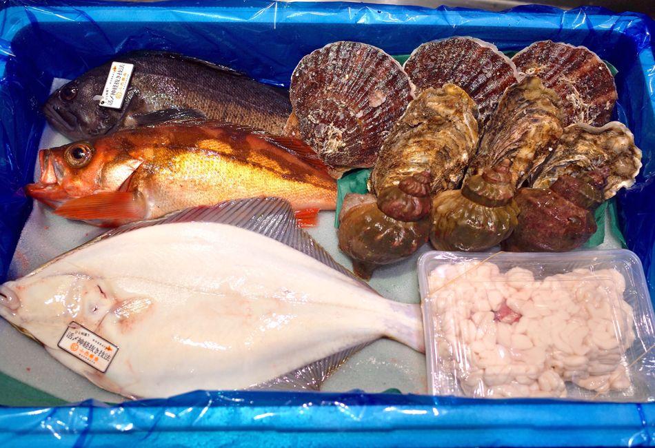 函館魚市場の目利きが選ぶ ぴちぴちの魚 鮮魚詰め合わせセット 魚屋 お取り寄せ 鮮魚