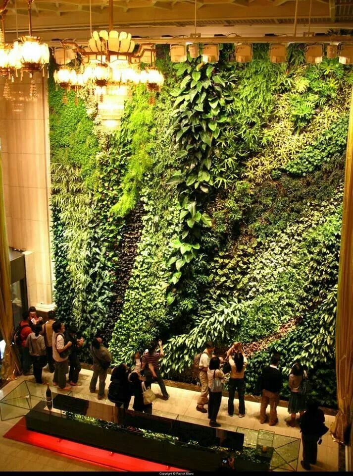 jardin vertical green wall Pinterest Verde, Plantas y Jardín