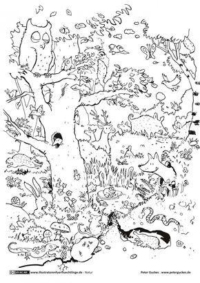 Natur Wald Tiere Guckes Ausmalen Malvorlagen