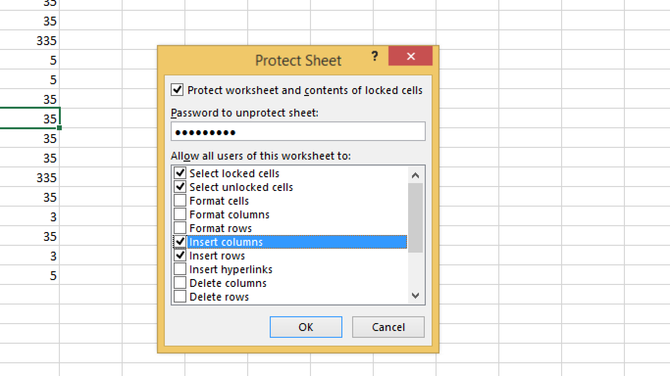 Protection In Excel For Worksheets And Workbook