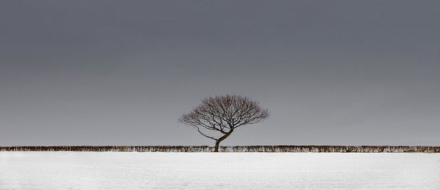 Landscape Photography by Nicholas Livesey