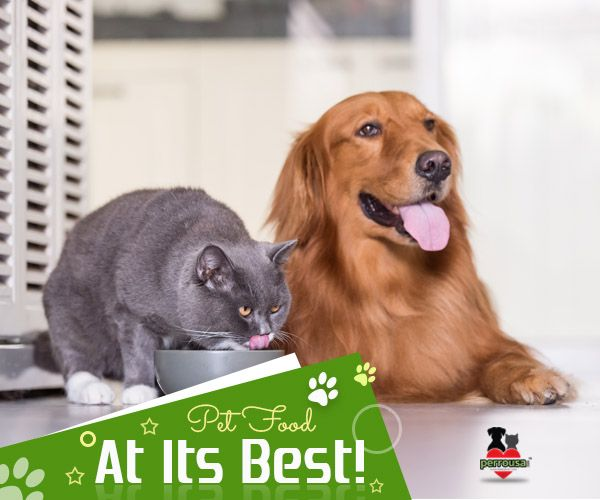 When It Comes To Treating Your Pets With Optimum Nutrition Tasty Petfood Then Perrousa Has No Match It S Food Animals Pet Food Delivery Natural Pet Food