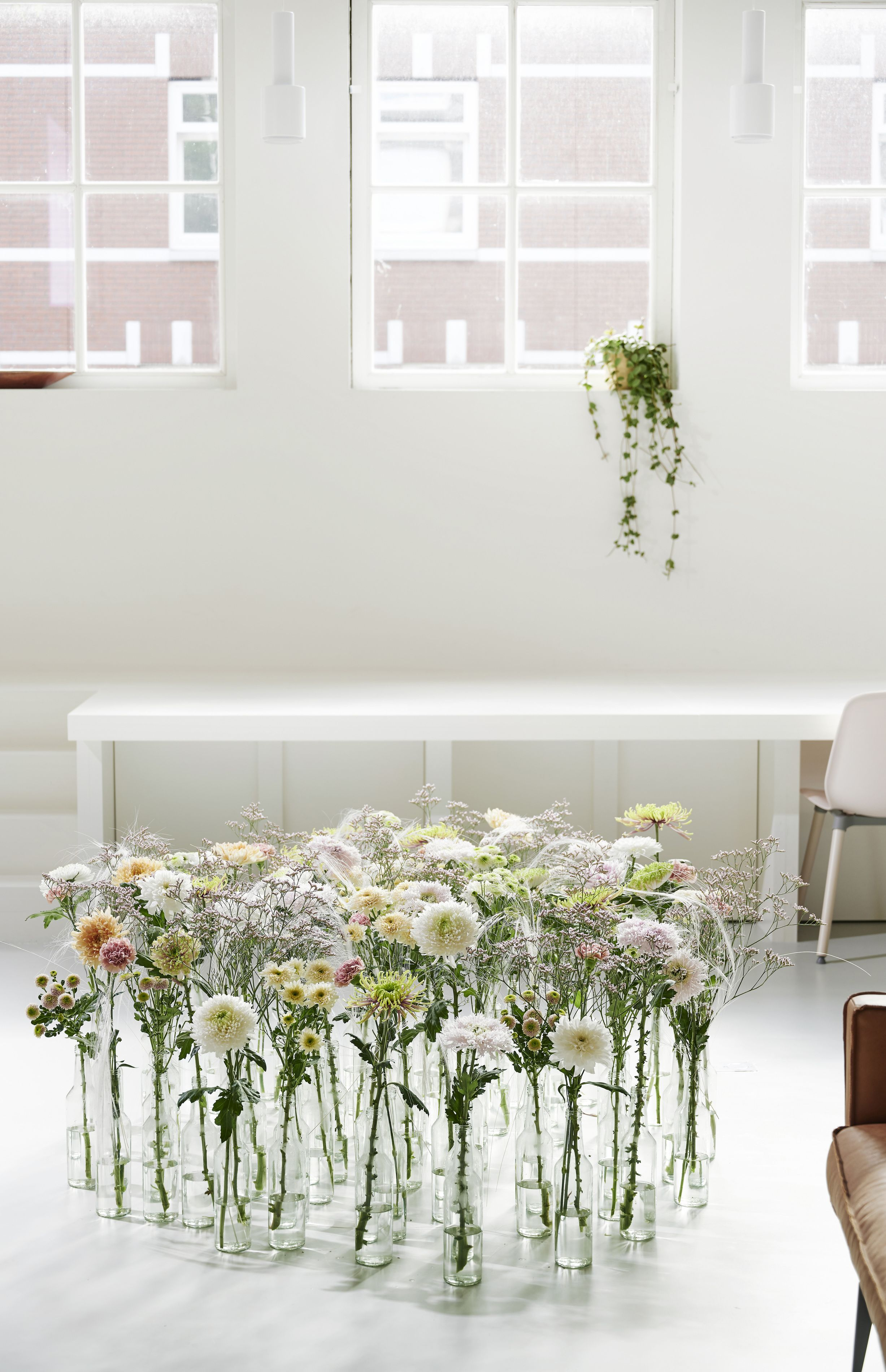 On The Flower Agenda Chrysanthemum In 2020 Chrysanthemum Long Vases Flowers