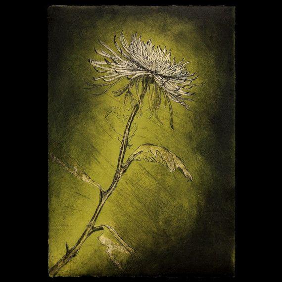 Araña mamá grabado de Color / impresión intaglio, 11,75 x 17. Marco ...