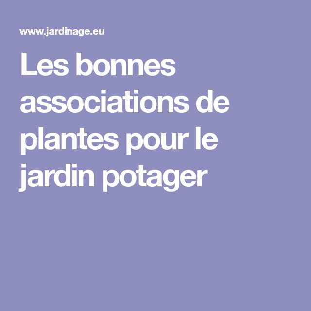 Les bonnes associations de plantes pour le jardin potager - Jardin des plantes angers horaires ...