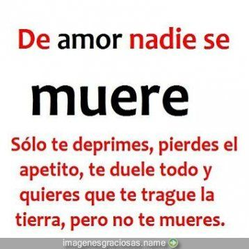 Frases Chistosas Del Amor Cosas Para Ponerse Quotes Love Y Frases