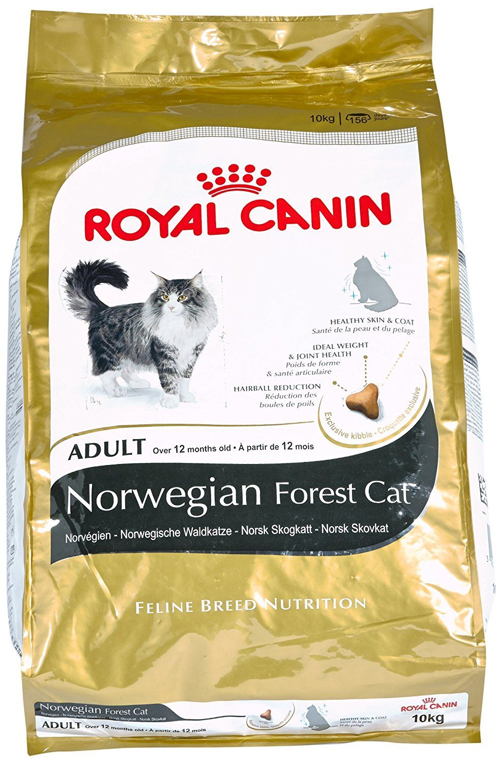 Royal Canin Cat Food Norwegian Forest 10 Kg Read More Details By Clicking On The Image Catfood Cat Food Food Snack Recipes