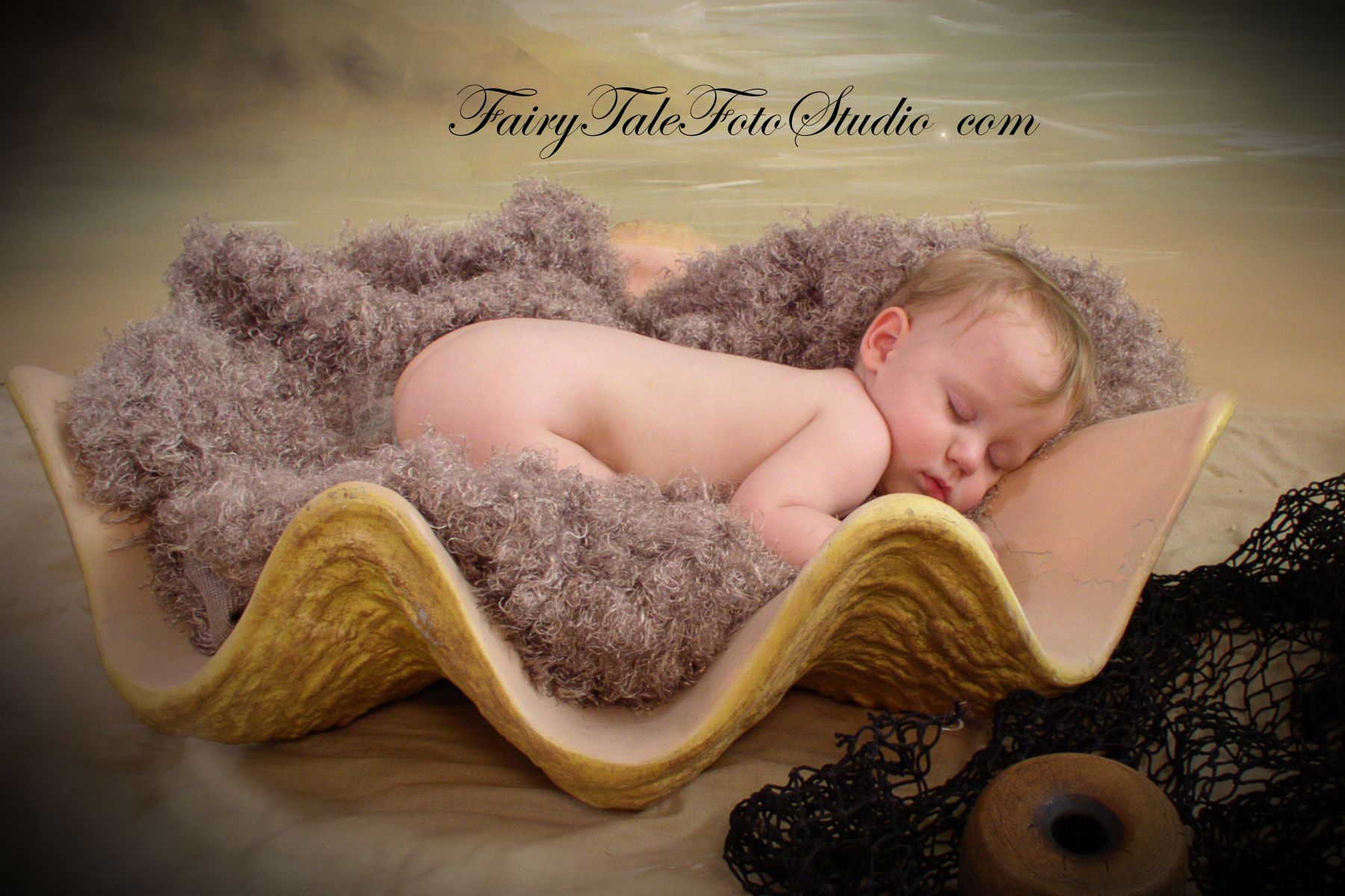 Baby In A Giant Clamshell Clam Shell Seashell Sea