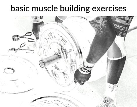 look here for great advice about muscle building  muscle